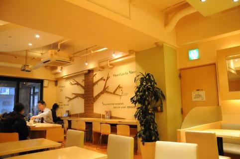 壁面には、段ボールであしらった『生命の樹』の様な系統樹の装飾 (*ゝω・*)ノ