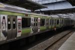 ちなみにAKB48電車もいま走ってます