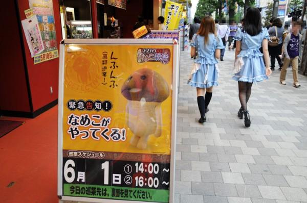 6月1日(金)14:00/16:00にセガ秋葉原1号館に再びやって来ます頑張れチ○コ!!
